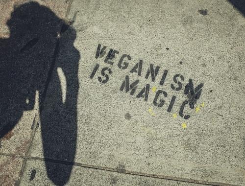 wat-is-veganisme
